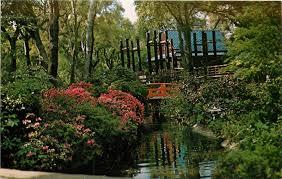 descanso gardens la canada california japanese tea garden postcard