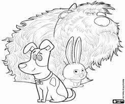 Disegni Di Pets Vita Da Animali Da Colorare E Stampare