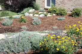 Xeriscape Front Yard Ideas For Your Yard Landscaping Lawn Home Improvement  Xeriscape Front Yard Texas
