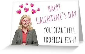 parks and rec leslie knope galentines day e gifts presents sticker packs cool cards edy parody humor puns banter