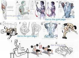 Muscle Gain Workout Chart Tricepts Health Exercise Tips Triceps Workout Gym
