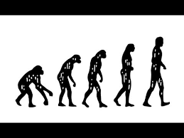 What Is Darwins Theory Of Evolution Youtube