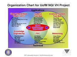 Stanford Uit Org Chart Ppt Networked Delivery Of Visible Human Datasets