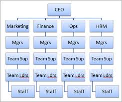 communications in organisations  organisation charts and effect on    organisational chart   example