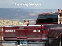 avoiding mergers photography. Framing; 7. Avoiding Mergers Photography