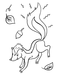 Small Picture Free Skunk Coloring Page 19054 Bestofcoloringcom