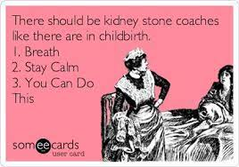 I get a 4mm kidney stone and go the er. 19 Kidney Stone Humor Ideas Humor Bones Funny Kidney Stones Funny