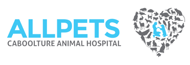 Where To Get The Best Sex Sites? | Veterinarians Caboolture ...