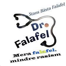 Bildresultat för dr falafel