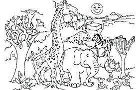 Zoo Animals Coloring Pages To Print Coloring Pictures Of Animals As