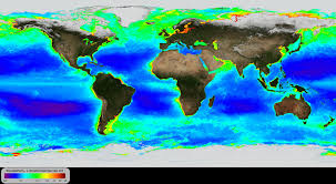Noaa Environmental Visualization Laboratory Global Annual