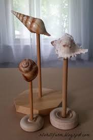 Seashell Display Stands museum like sea shell display stands made from wood beach stuff 1