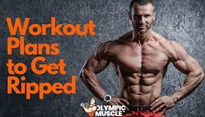 workout plans to get ripped in depth