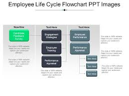 Employee Life Cycle Flowchart Ppt Images Powerpoint