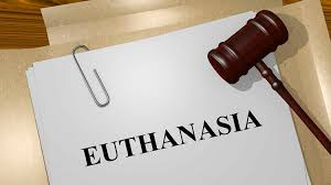 essay on euthanasia international law aspect snm education essay on euthanasia international law aspect