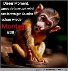 Schönen Montag Sprüche Lustig Montag Bilder
