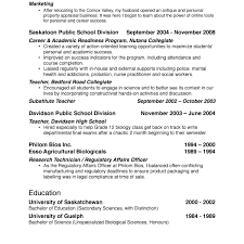 Bullet Points In Resume Resume For Study