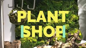 Exotic Plants - After visiting our new store one of our...