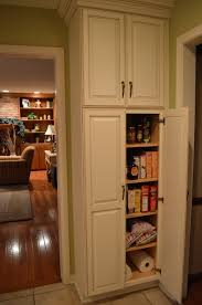 Pantry For Small Kitchen Small Kitchen Pantry Ideas Home Design Ideas