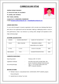 Create Resume Online And Download Pdf India For Fresher With Picture