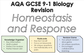 What Is Homeostasis In Biology Aqa 9 1 Gcse Biology Homeostasis And Response Revision Bundle Trilogy
