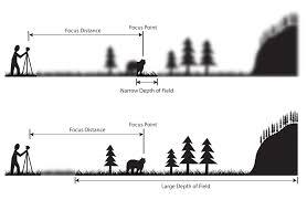 Photography Depth Of Field Chart Understanding Depth Of Field A Beginners Guide
