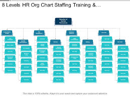 8 Levels Hr Org Chart Staffing Training And Compensation