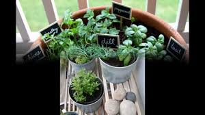 apartment herb garden. Exellent Garden Garden Ideas Herb Garden Apartment With Apartment Herb Garden 2