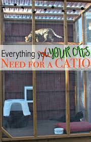 outdoor cat enclosure diy fresh everything you need for a catio of outdoor cat enclosure diy