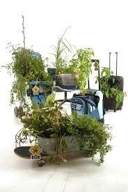 mobile garden the