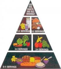 Food Pyramid Project The Food Pyramid Pipo Programme