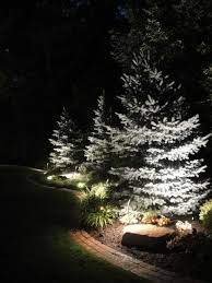 Evergreen Outdoor Landscape Lighting Uplighting Evergreen Trees Landscape Lighting Landscape