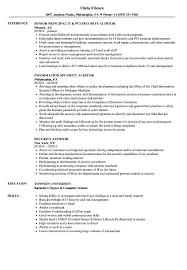Security Auditor Resume Samples Velvet Jobs