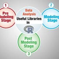 Dissertation introduire exemple   report    web fc  com Dissertation introduire exemple