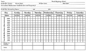 Peak Flow Metre Chart Peak Flow Meter 134405559613 Asthma Peak Flow Meter Chart