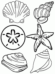 Small Picture Seashells Coloring Pages 99coloringcom quilting Pinterest