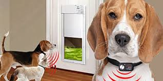 power pet doors