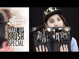 pony s beauty diary makeup brush special with subs special side brush