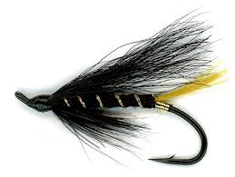 Salmon Fly Patterns Simple The Stoat's Tail Salmon Single Hook Fly