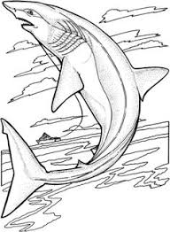Small Picture Free Printable Ocean Coloring Pages For Kids Ocean Unit