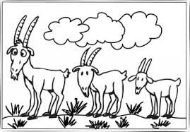Small Picture Goat Coloring Pages