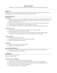 Resume For Clerk Typist Position Sidemcicek Com