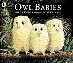 Image result for the owl babies