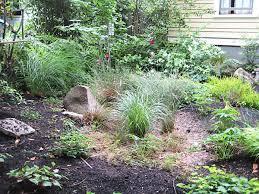 Small Picture Rain Gardens EMSWCD