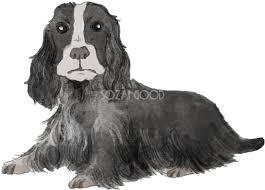 イングリッシュコッカースパニエル座り姿犬のリアルかっこいい無料