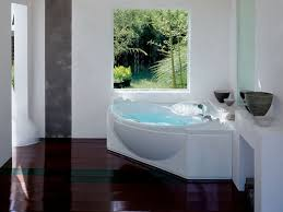 amazing small corner bathtub sizes