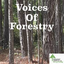 Voices of Forestry