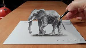 drawing 3d elephant how to draw 3d elephant on paper