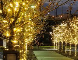 Xmas lighting ideas Tree Curb Appeal Outdoor Holiday Lighting My Blog Curb Appeal Outdoor Holiday Lighting Above Beyondabove Beyond