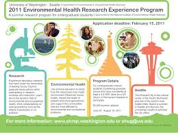 essay about environment and health order paper environmentlink wordpress com